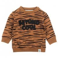Feetje sweater tijger